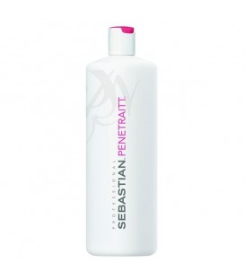 Sebastian Penetraitt Masque - 500ml -- OUT OF STOCK