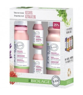 Matrix Biolage R.A.W. Recover Kit